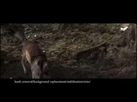 VFX Demo Reel 2012