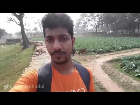 Mahasthangarh   Historical Palace of King Porshuram   Bogra   Bangladesh   Travel Blog