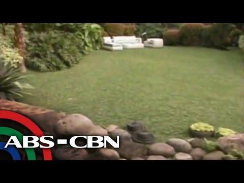 Kris TV: Coco Martin Shows Off His Chic Garden