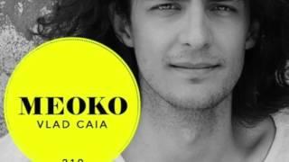Vlad Caia – Exclusive MEOKO Podcast #210