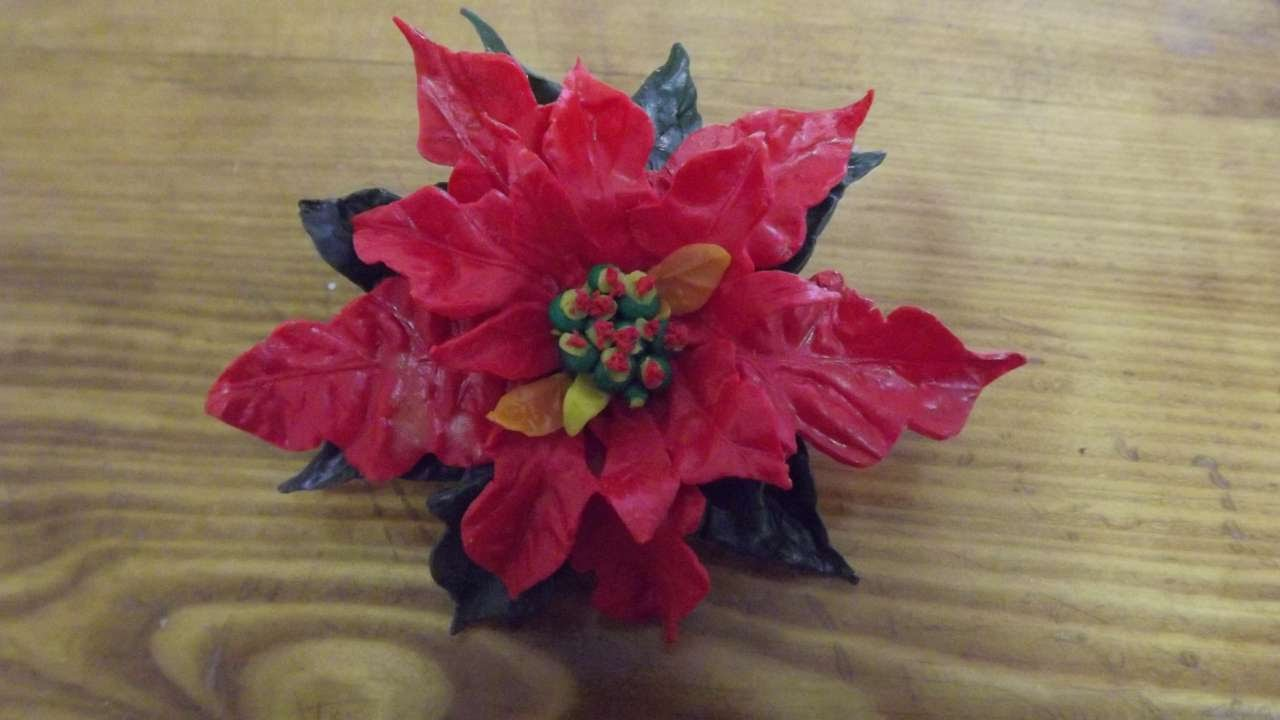 Stella Di Natale In Casa.Crea Una Stella Di Natale In Pasta Polimerica Fai Da Te Casa Guidecentral