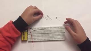 Простая электрическая цепь на двух светодиодах