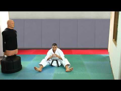 Karate : L'énergie ne vient pas des hanches [karate-blog.net]