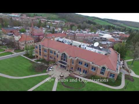 The Alfred University: A Quick Glance