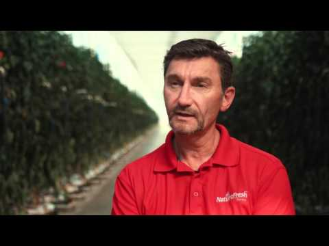 Meet the President Peter Quiring - NatureFresh Farms