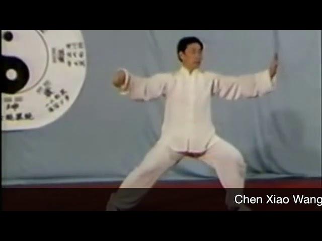 Chen Xiao Wang - Tai Chi style Chen Laojia Yilu  [陈氏太极拳老架 Taijiquan style Chen]