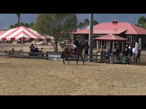 Triple Threat & Nina Vogel - CPHA Amateur Medal