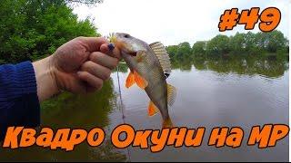 Рыбалка на Окуня на Москва реке. Обзор новой плетёнки