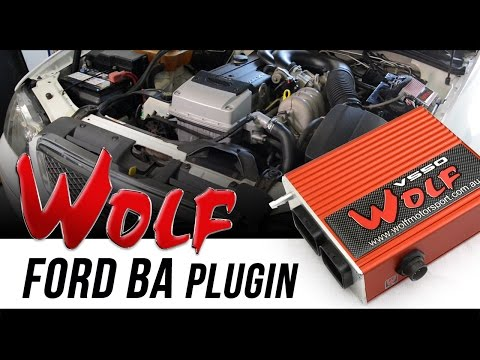 Ford Falcon Plugin ECU By Wolf EMS