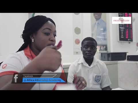 Africa Internship Academy |JOB SHADOW 2017