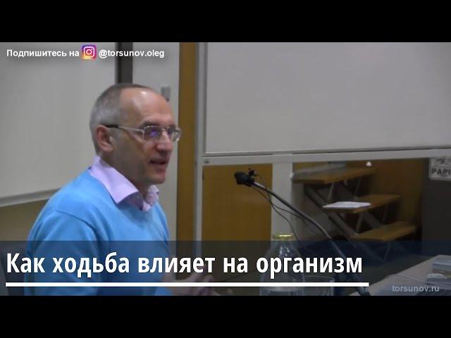Торсунов О.Г.   Как ходьба влияет на организм