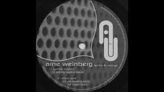 Arne Weinberg - Synthetic Dissection