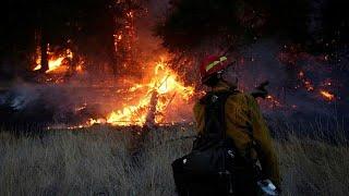 Már a mostani minden idők legpusztítóbb kaliforniai tüze