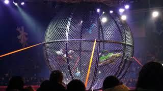Российский цирк. Мотоциклисты  с номером из книги рекордов Гиннеса