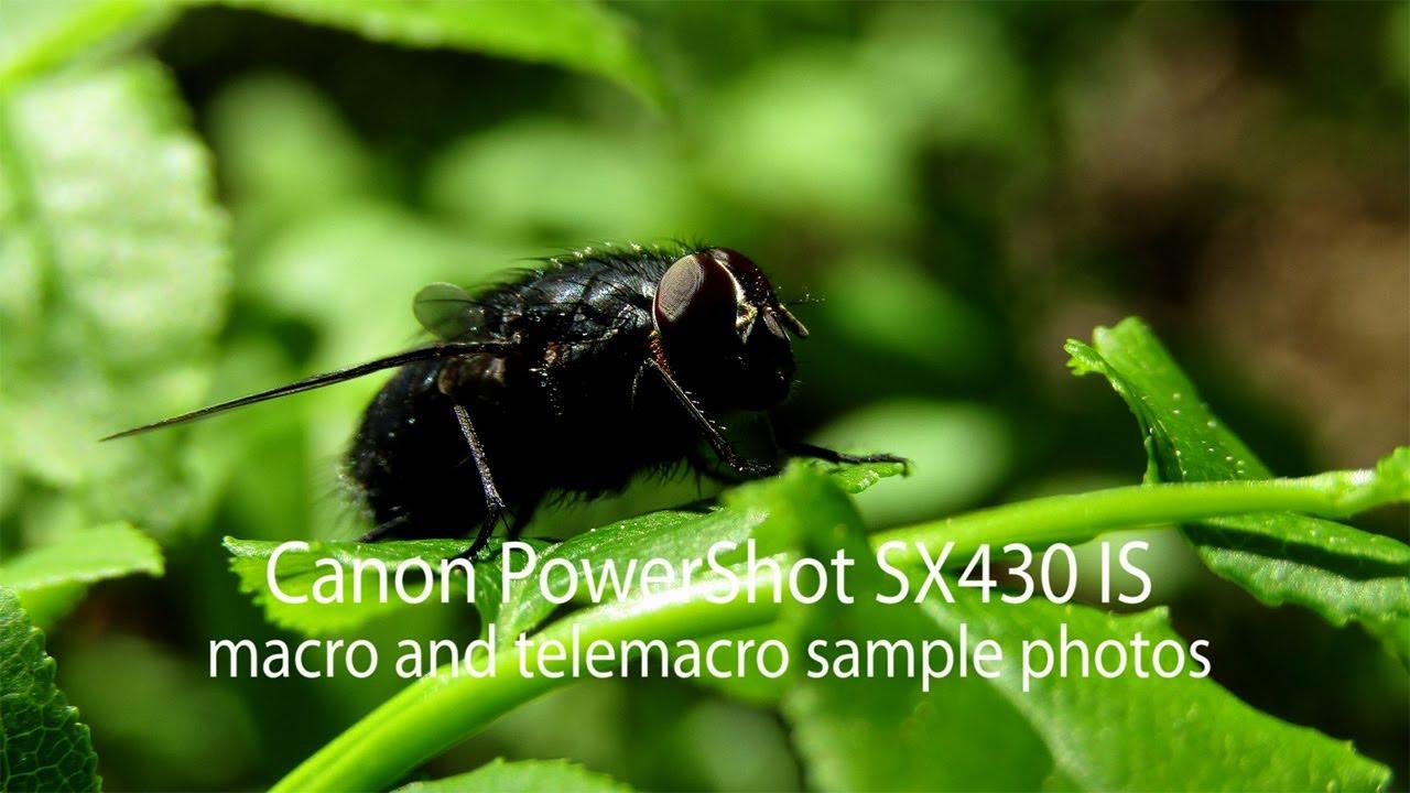 Canon Powershot Sx430 Is Macro Telemacro Shots Youtube Kamera Prosumer