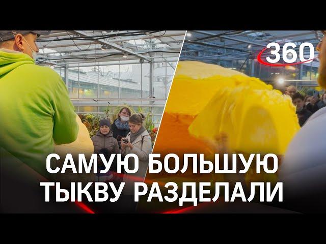 Коллапс из-за тыквы-гиганта: вырастили в Подмосковье - раздали в Ботаническом саду МГУ