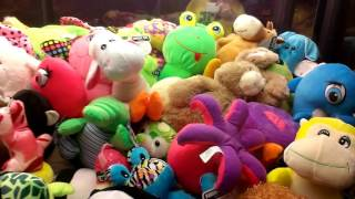 (RAINBOW CRANE) ANIMAL HOUSE CLAW MACHINE HES KIND OF DUG IN