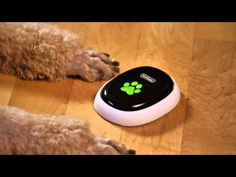 PetChatz® HD and PawCall®: Call Your Pet; Your Pet Calls You