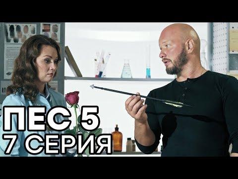 Сериал ПЕС - 5 сезон - 7 серия - ВСЕ СЕРИИ смотреть онлайн | СЕРИАЛЫ ICTV