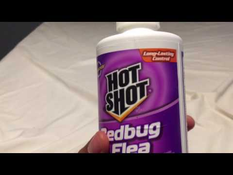 HOW TO GET RID OF BEDBUGS