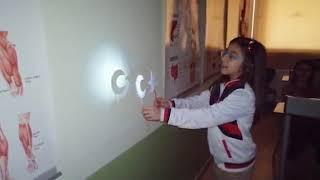 5. Sınıf / Işığın Yayılması -2