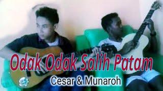 Odak odak Karo Salih Patam Cesar & Munaroh Cover Mp3