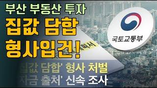 집값 담합 첫 형사처벌! 부산 부동산 투자!