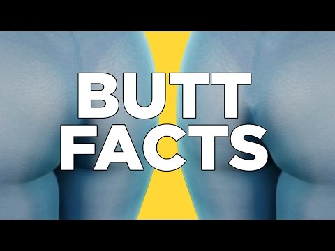 10 Butt Facts That Will Excite You