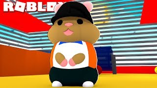 My life as a hamster... (Roblox Hamster Simulator)