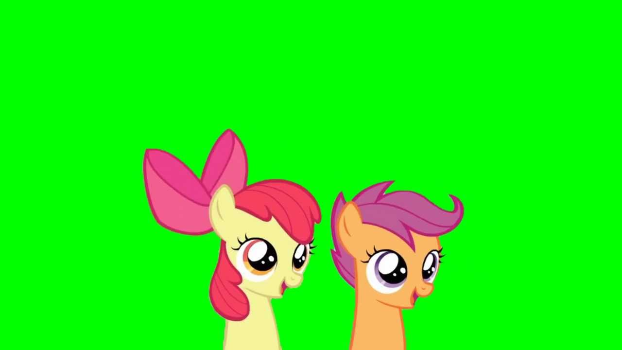 Applebloom And Scootaloo Head Bob Loop Green Screen Ponies Youtube Scootaloo and apple bloom have known each other since they were kids. applebloom and scootaloo head bob loop green screen ponies