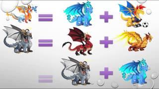 طريقة الحصول على تنانين المهمة الجديدة في لعبة Dragon City