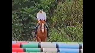 Равновесие в движении (верховая езда)