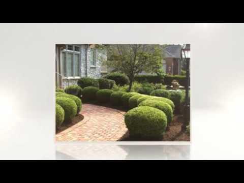 Lawn Maintenance Chelsea AL