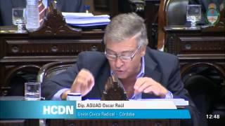 Oscar Aguad- Informe Capitanich en el Congreso