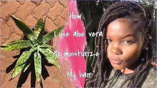 How I Prepare Aloe Vera To Moisturize My Hair   Step-by-step   #Zimbabwean YouTuber