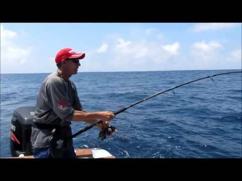 Yellowfin Tuna On A Popper - Galapagos Islands