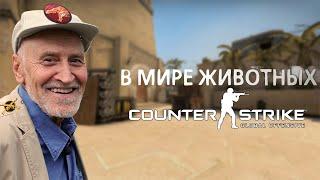 В мире животных Counter-Strike: Global Offensive