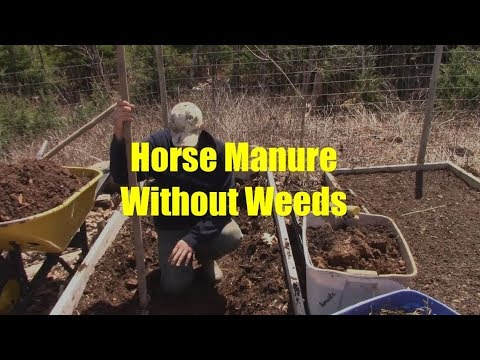 How To Use Partially Composted Horse Manure