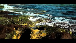Michael Mind Project Feat. Dante Thomas - Feeling So Blue (Official Video) YouTube Videos
