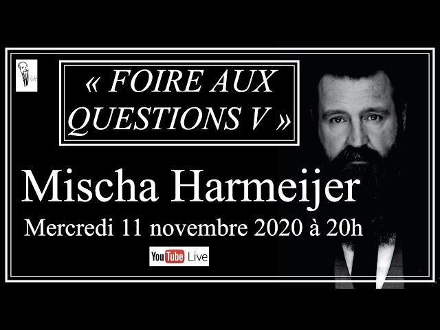 FOIRE AUX QUESTIONS V   Mischa Harmeijer