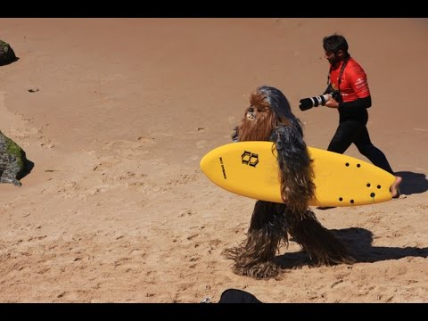 chewbacca surfing in cote des basques - biarritz