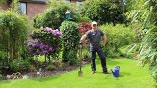 Rasenpflege zum Herbst - NewWonder555