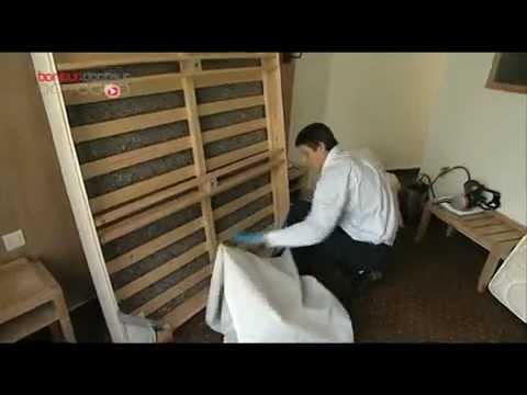 punaises de lit elles passent l 39 attaque allo docteurs sur france 5 youtube. Black Bedroom Furniture Sets. Home Design Ideas