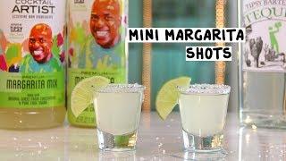 Cocktail Artist Mini Margarita Shots - Tipsy Bartender