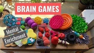 Brain Games for Dogs-Mental Enrichment