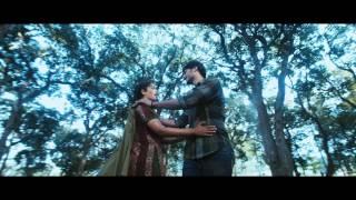 Nee Kopam Video Song || Neeku Naaku Dash Dash Movie || Prince, Nandita