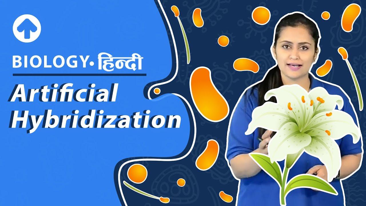Artificial hybridization   Biology - YouTube