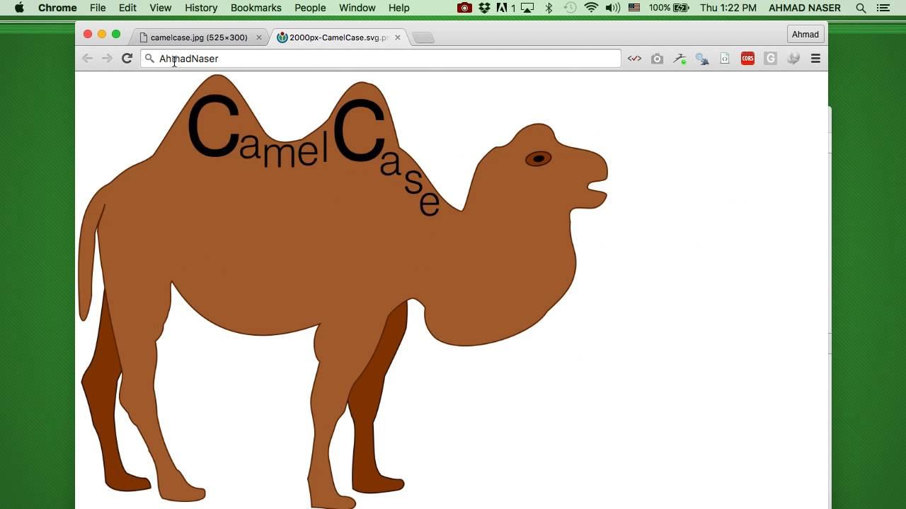 5 9 Naming Convention - برمجة Xcode 8 and Swift 3