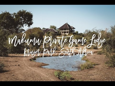 Makumu Private Game Lodge, Kruger Park, South Africa - Spectacular Game Drives & Wellbeing