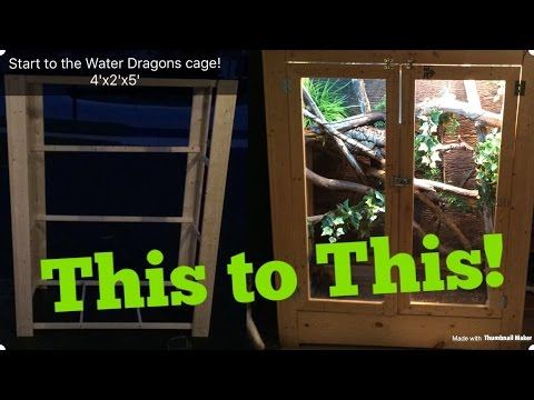 How to Build an Adult Chinese Water Dragon Enclosure